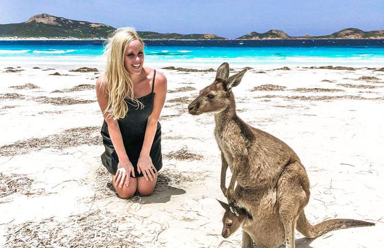 jumping kangaroos in real
