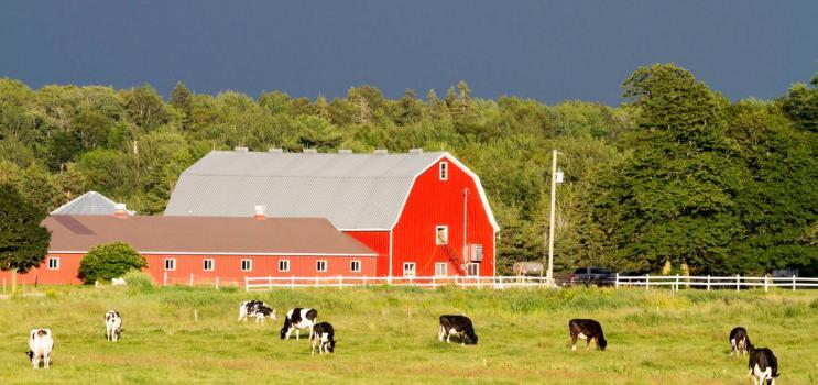 farm products wasola mo