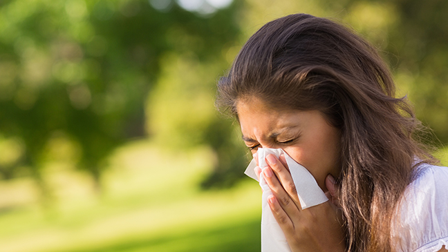 hay fever hong kong
